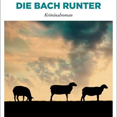 Cover_Die Bach runter