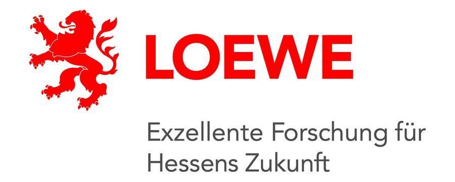 Logo Loewe Exzellente Forschung