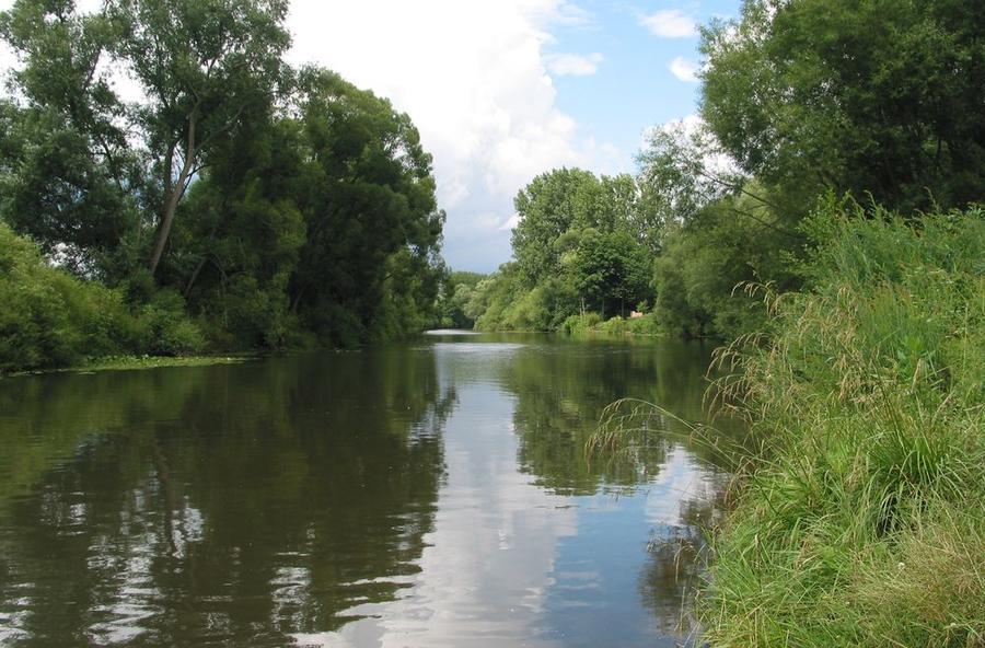 Lahn mit grünem Uferbewuchs