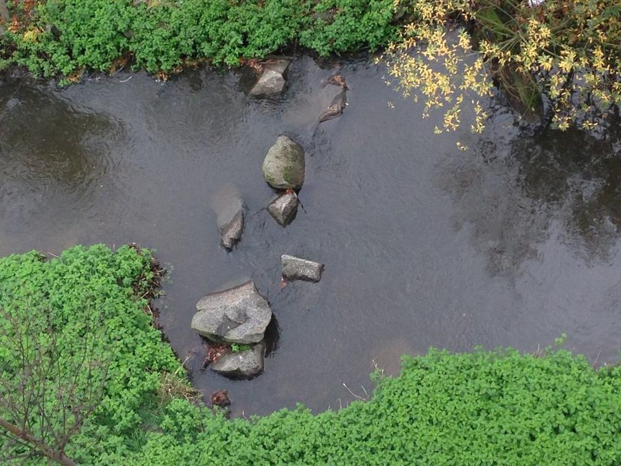 Blick auf ein Stück der Wieseck mit integrierten Steinen