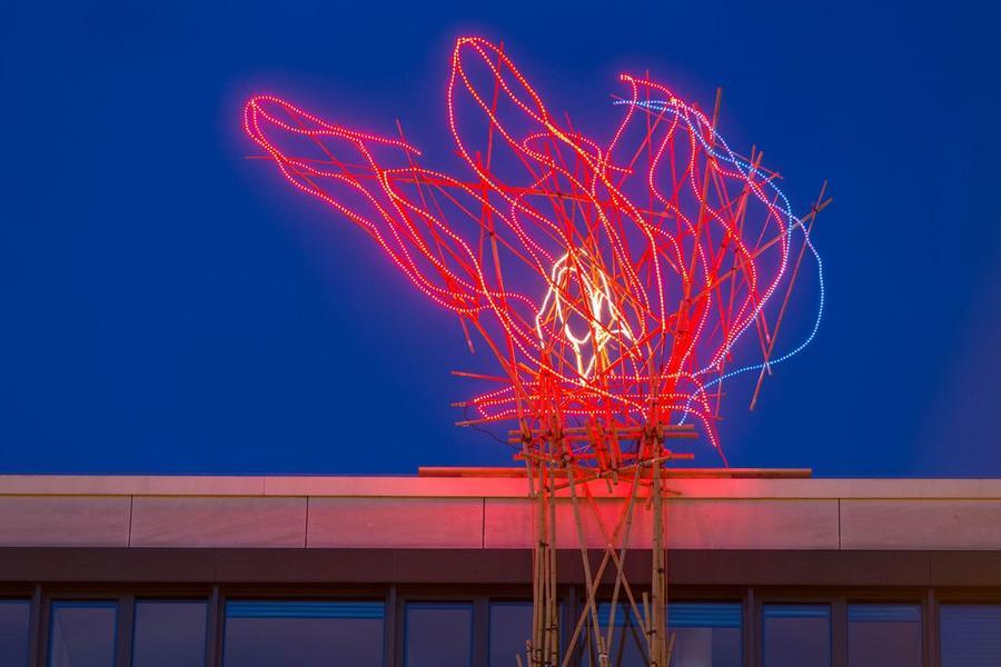 Knut Eckstein - Installation