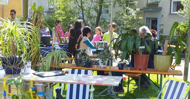 Ansammlung von Pflanzen bei einem Tauschmarkt