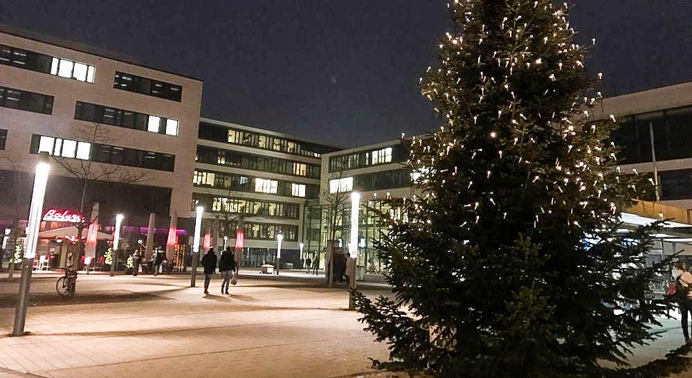 Blick auf das Rathaus mit Weihnachtsbaum
