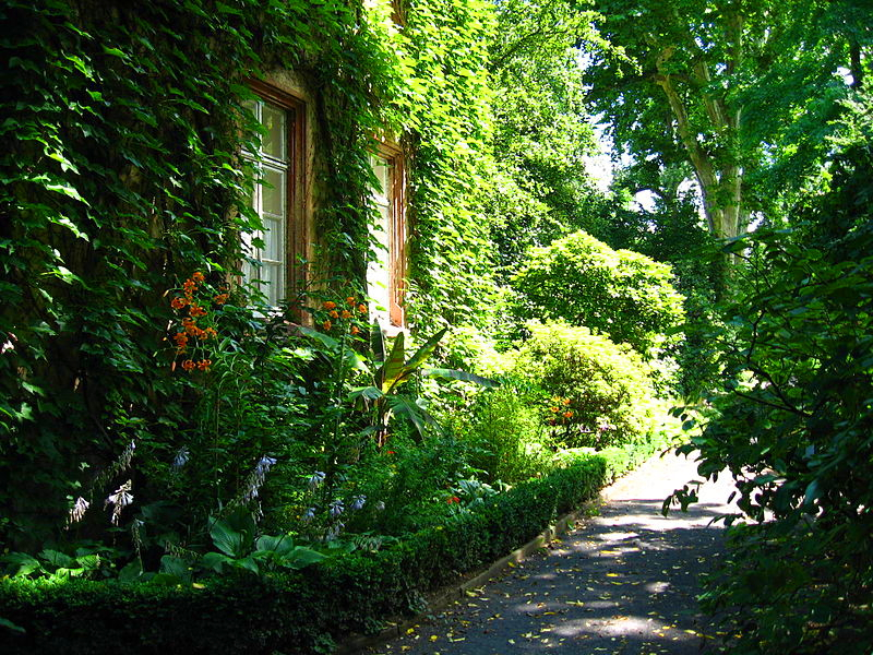 Botanischer Garten - bewachsenes Haus