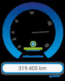 STADTRADELN-Fahrradkilometer und CO2-Vermeidung 2017 in Gießen