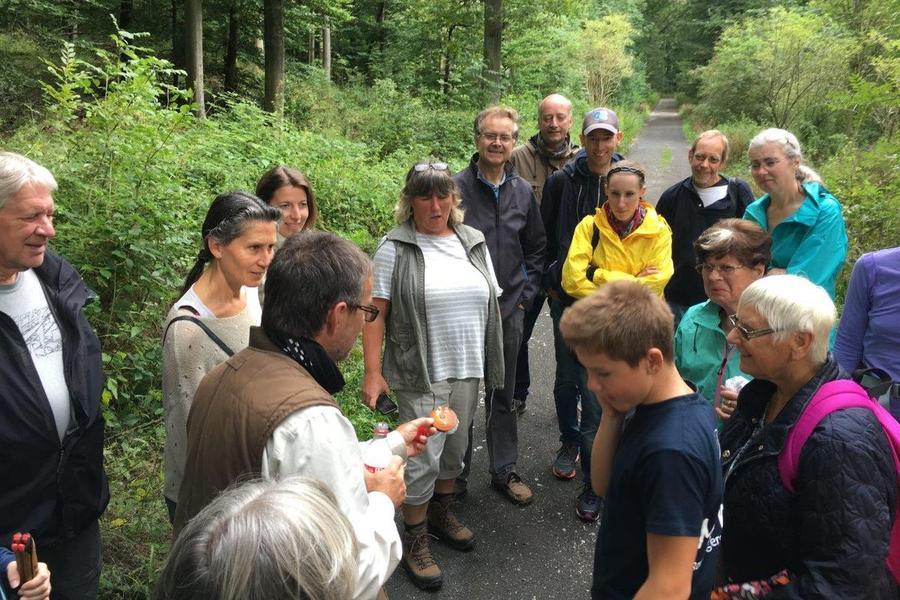 Naturschutzwanderung 2017 im Stadtwald auf den Hangelstein