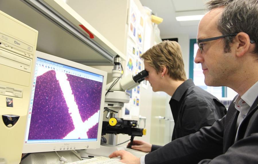 Arbeit an Mikroskop und Bildschirm an der THM